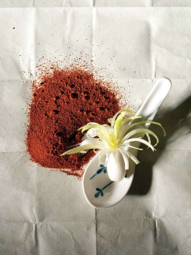Photograph showing a dash of paprika with an onion bulb on a weathered sheet of paper.